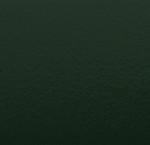 113 verde scuro